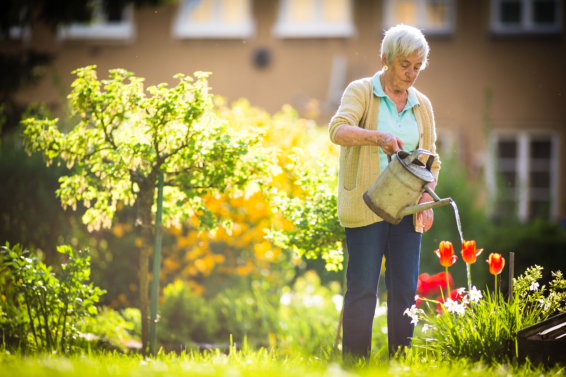 Fun Games and Activities to Keep Your Seniors Happy at Home