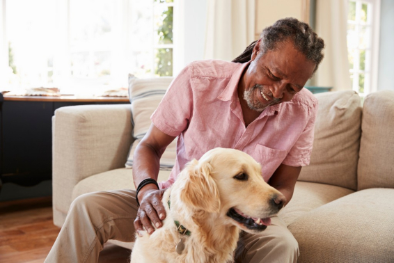 Why Having Dogs as Pets Is Beneficial for Older People's Health